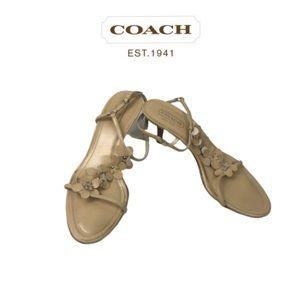 Coach Cream Gorgeous Sandals. Sz 8